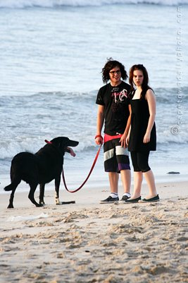 A couple and their dog on a beach