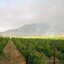 Stellenbosch bushfires of 2009