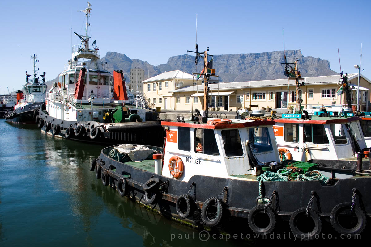 Tug boats in the Table Bay harbour