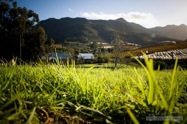 Sky, mountain, grass
