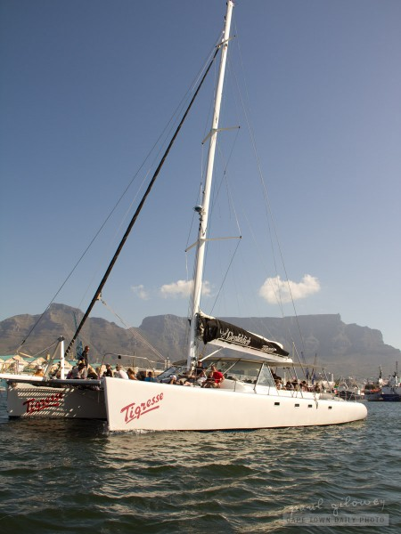 The largest catamaran in Africa?