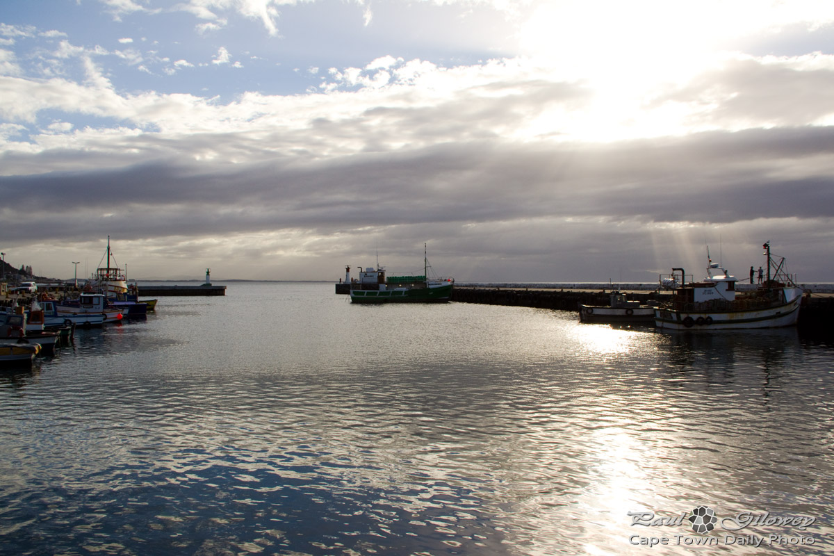 A morning at Kalk Bay harbour
