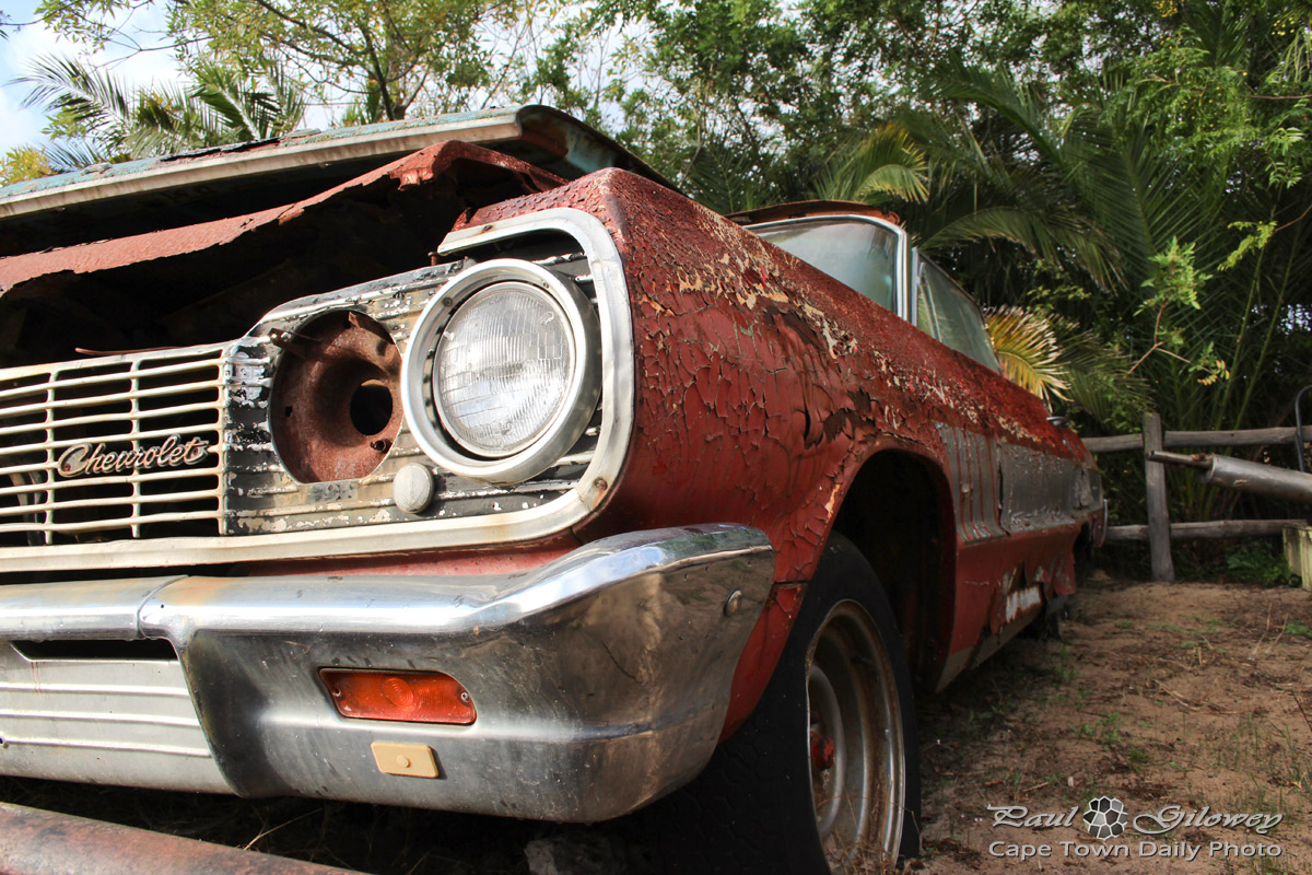 Rusted old cars at the Wijnland Auto Museum | Cape Town Daily Photo