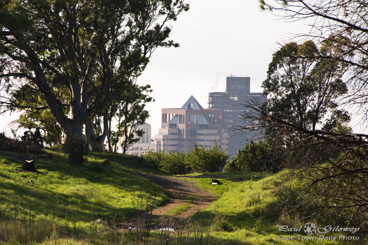 Where to walk on Signal Hill