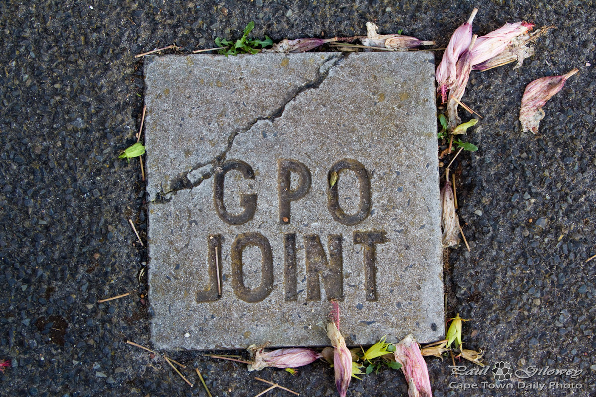 GPO Joint?