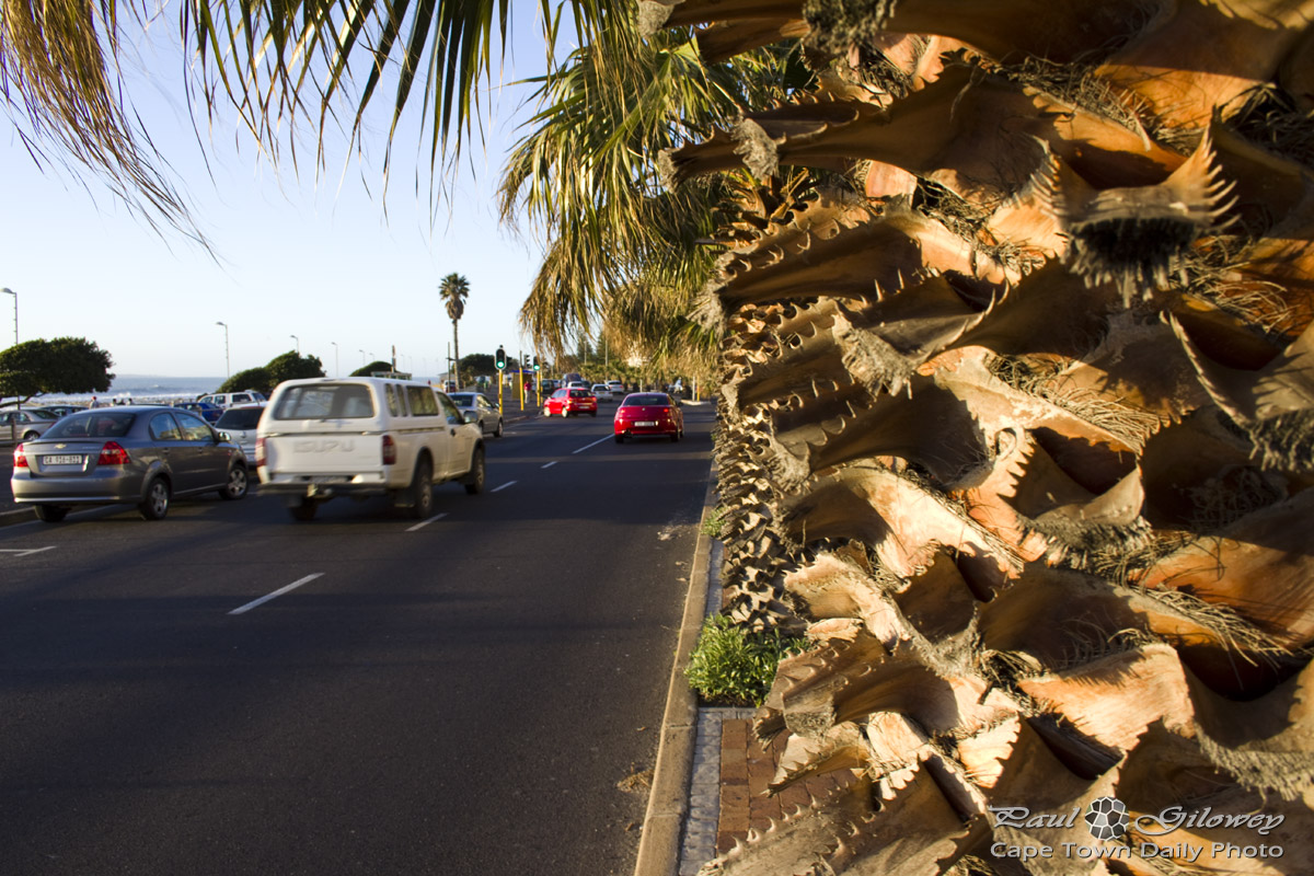 Beach Road in Sea Point