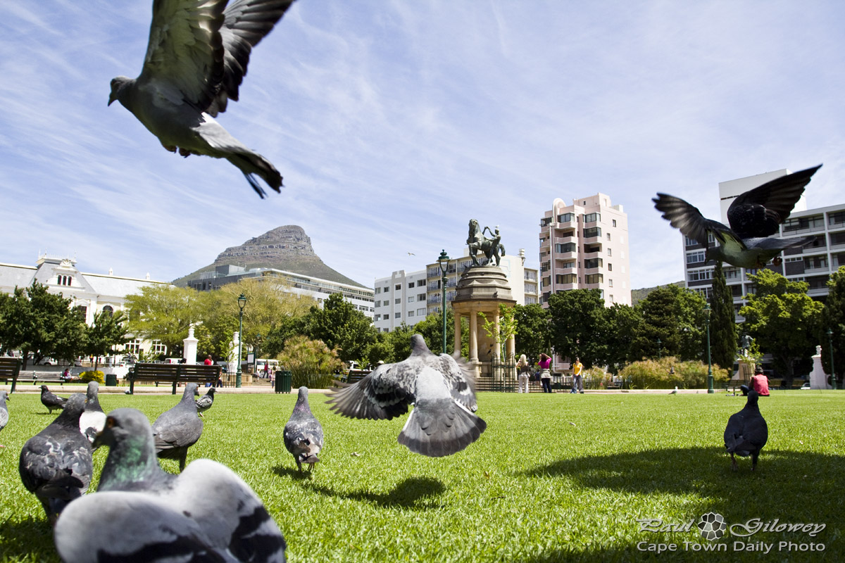 Peninsula trip stop 2 The Companys Garden Cape Town Daily Photo
