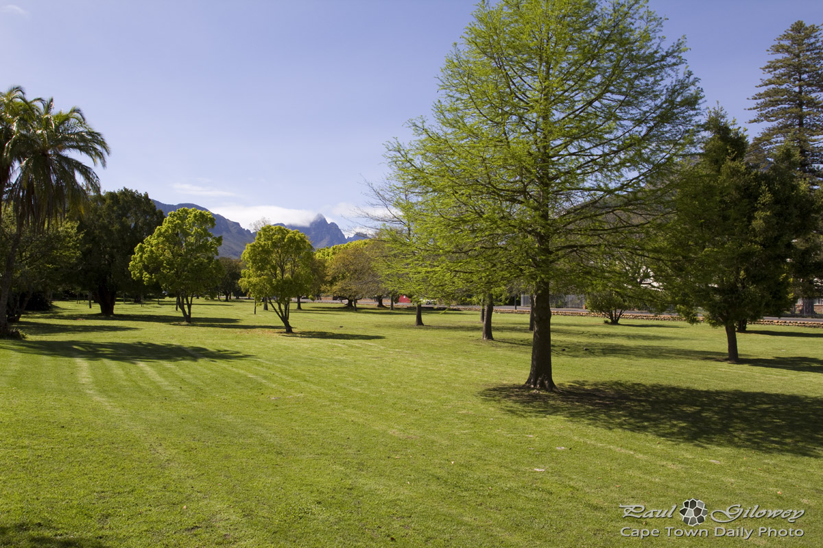 Green lawns of Stellenbosch