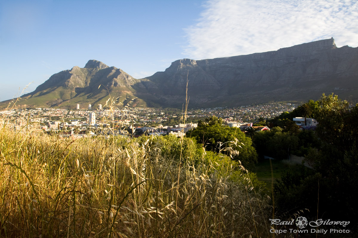 Table Mountain and the city bowl