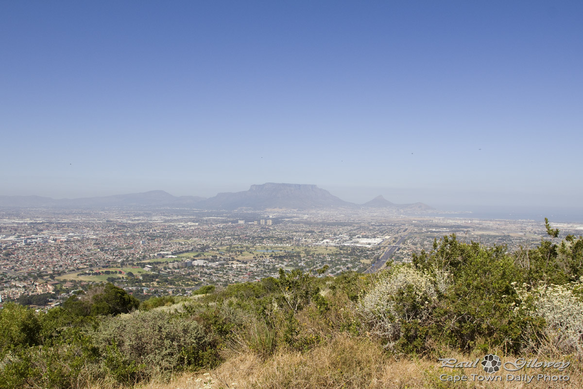The Golden Mole trail on Tygerberg Hill