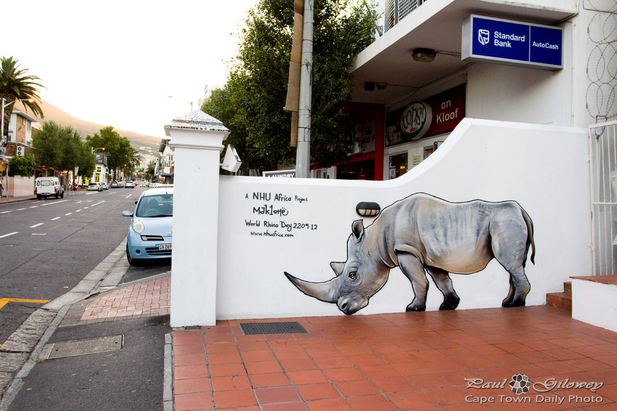 A rhino [mural] in Kloof Street