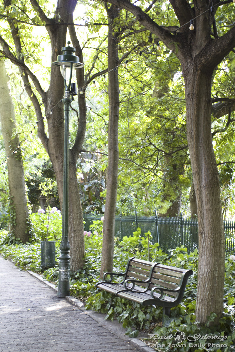 Peaceful places, garden benches