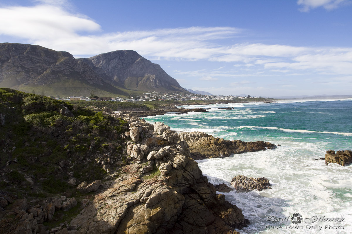 Mountains, fynbos, and the wild-wild ocean