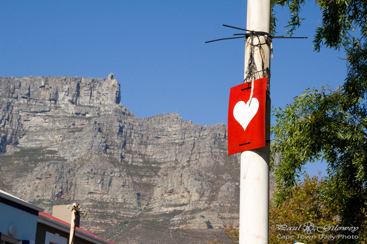Do you love Cape Town?