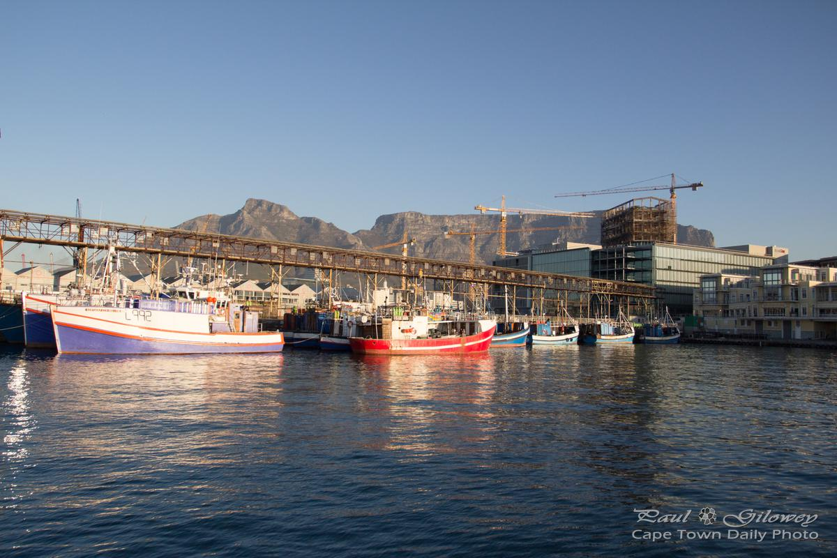Cape Town's fishing boats