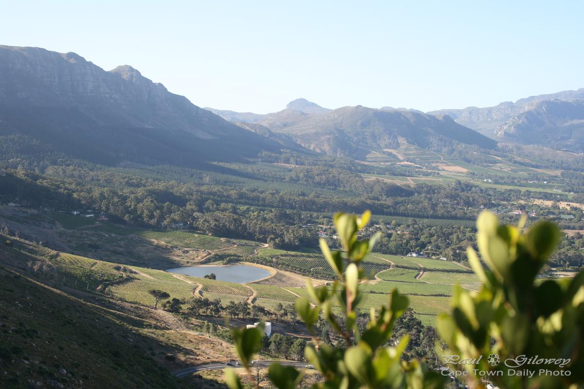 Beautiful Constantia Valley