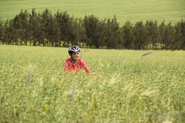 Mountain Biking at Meerendal Wine Estate